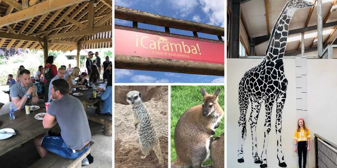 Brewster Partners celebrate their 8th Birthday at the Yorkshire Wildlife Park